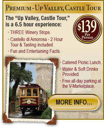 Premium Tour Castle Home